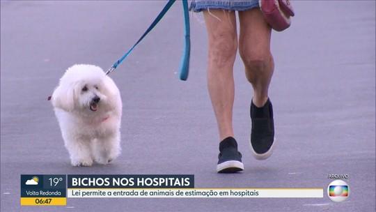 Lei permite a entrada de animais domésticos e de estimação em hospitais do Rio