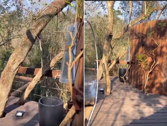Ex-BBB Marcela MCGowan fica em cabana-bolha com diária de R$ 1600 (Foto: Reprodução/Instagram @marcelamcgowan)