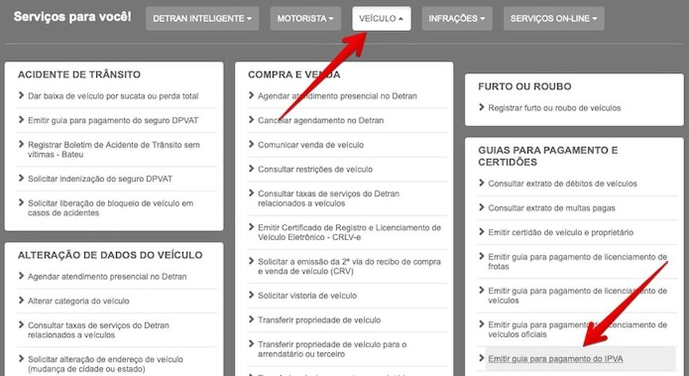 Acesse a opção indicada no site do Detran-PR — Foto: Reprodução/Helito Beggiora