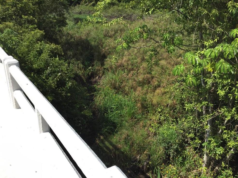 Espaços sob pontes na BR-262 poderiam ser transformados em corredores ecológicos para facilitar a travessia dos animais sem usar a rodovia — Foto: Instituto Homem Pantaneiro/Divulgação