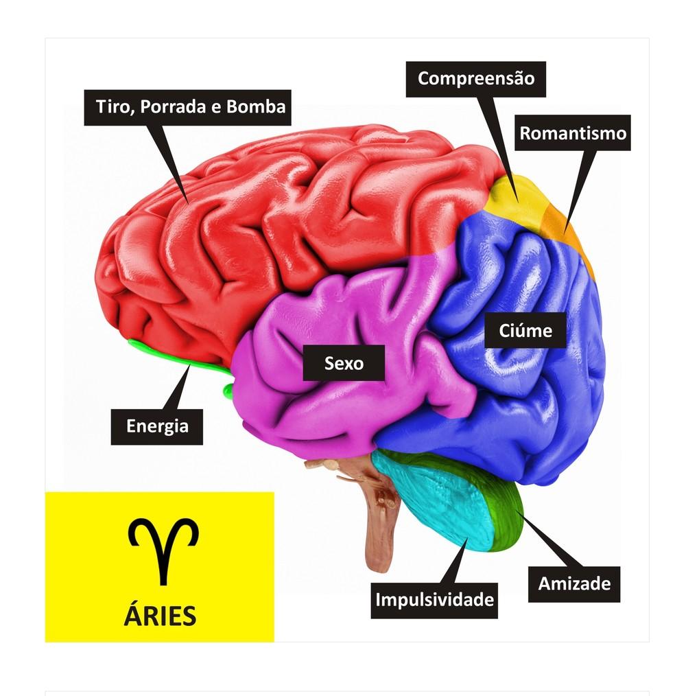 Cérebro de Áries  (Foto: TV Globo )
