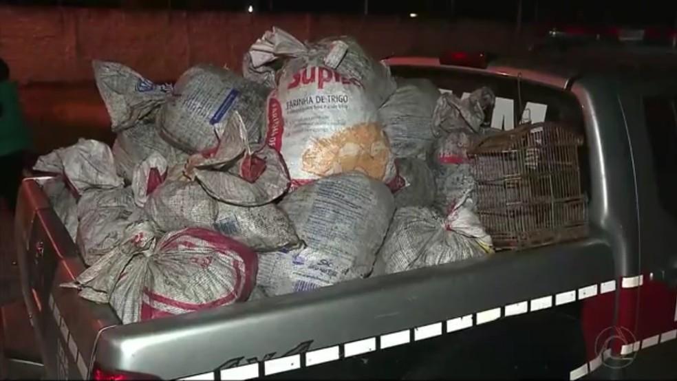 Animais ficavam presos em armadilhas feitas com sacos de estopa, diz polícia (Foto: Reprodução/TV Cabo Branco)
