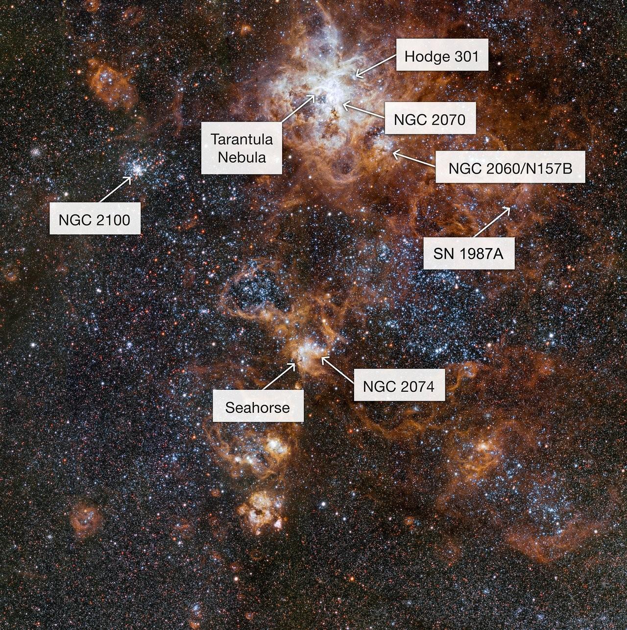 Nebulosa da Tarântula - explicações (Foto: ESO/ Divulgação)