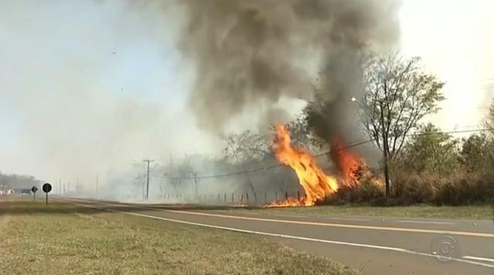 Fumaça provocada por incêndio em reserva ambiental tomou conta de Castilho (SP) (Foto: Reprodução/TV TEM)