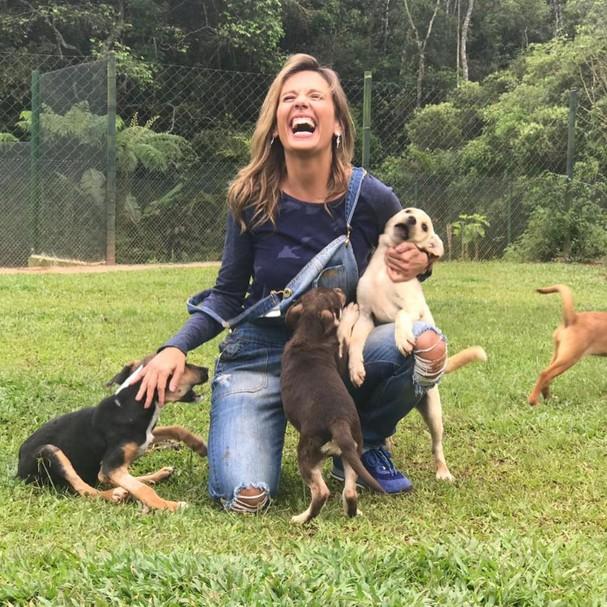 Luisa Mell promove feira de adoção (Foto: Reprodução / Instagram)