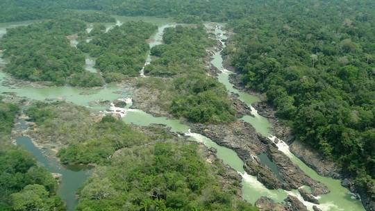 Foto: (Divulgação / Governo do Pará)