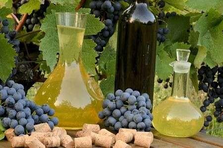 Confira minha seleção de vinhos brancos feitos com uvas tintas (Foto: Reprodução)