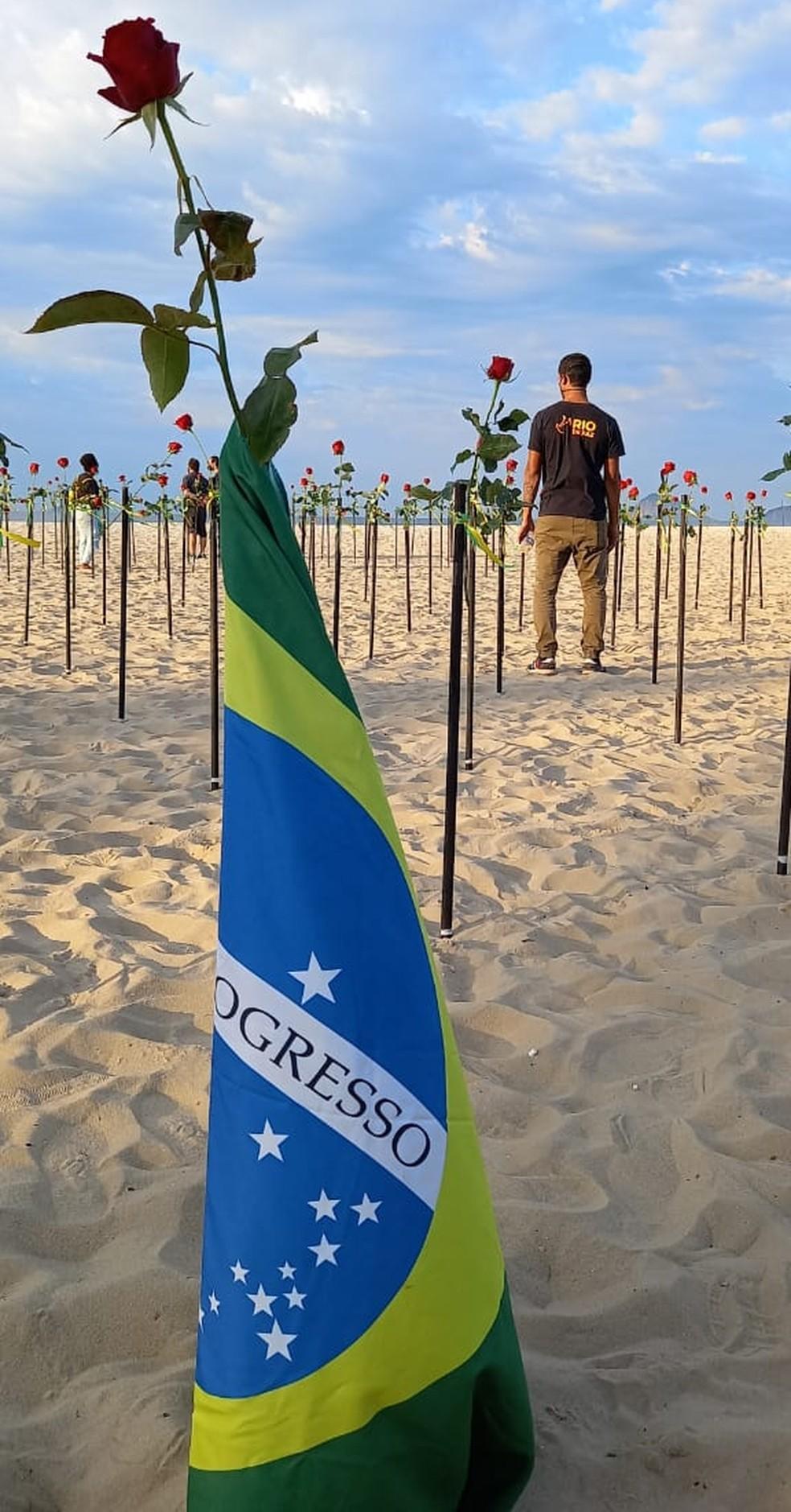 Bandeira do Brasil numa rosa plantada em Copacabana pelo Rio de Paz — Foto: Reprodução