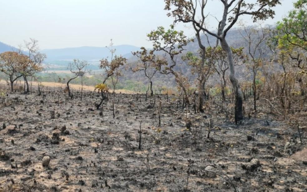 Incêndio queima mais de 30 mil hectares da Chapada dos Veadeiros em Goiás — Foto: Divulgação/Polícia Civil