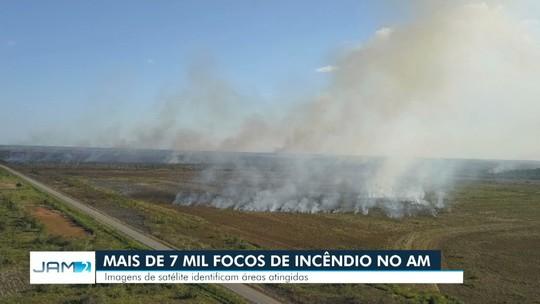 Mais de 7 mil focos de incêndio foram registrados no AM em 2019
