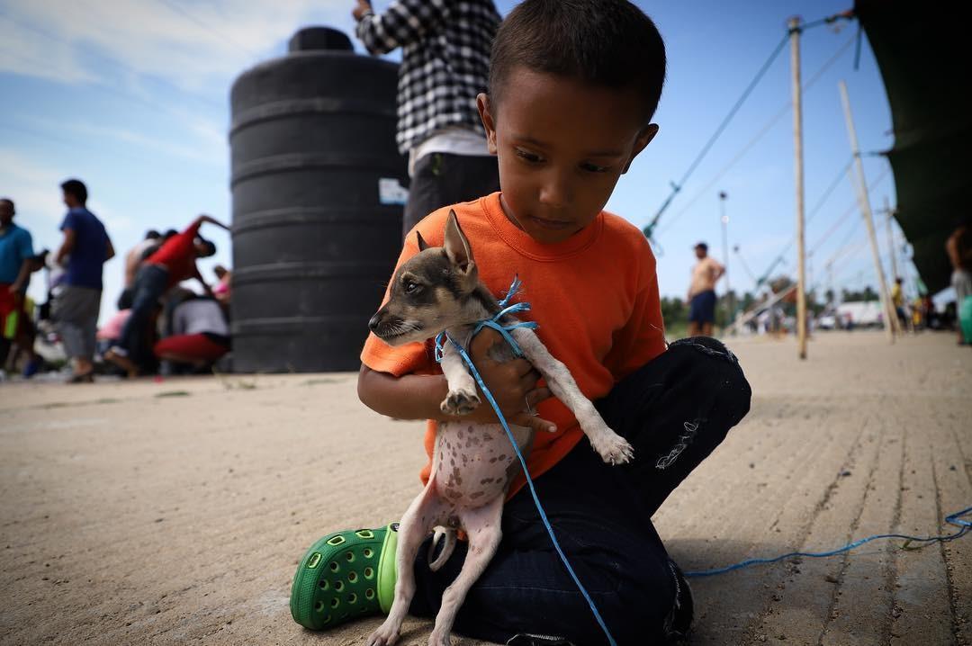 Menino migrante e seu cachorrinho  (Foto: Héctor Alfaro)