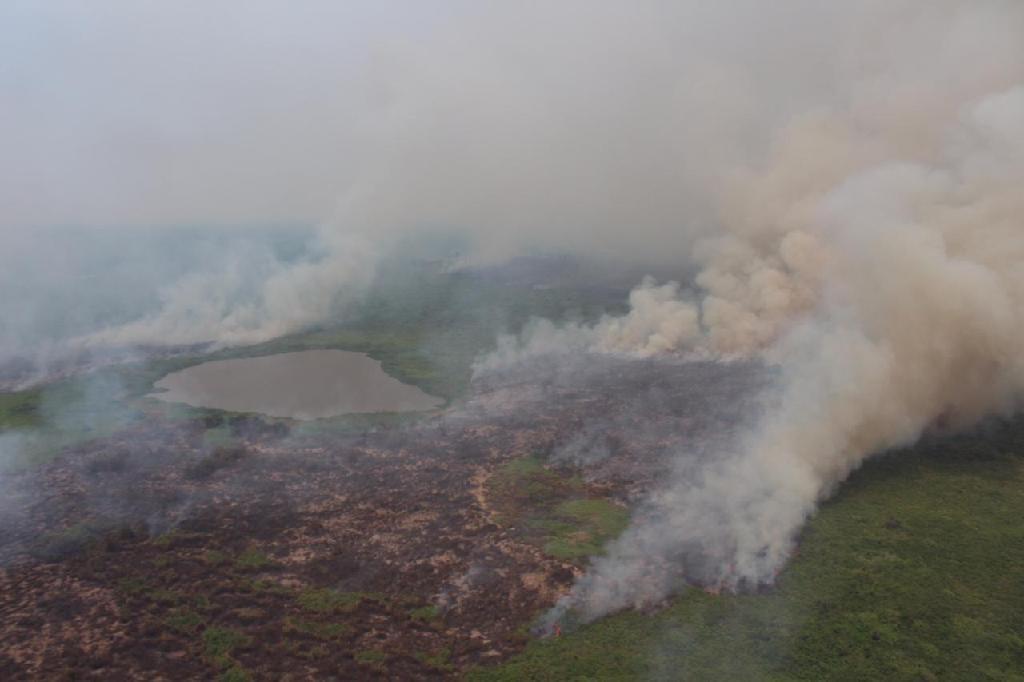 Maior reserva particular do patrimônio natural do Brasil registra queimadas há 4 semanas em MT - Notícias - Plantão Diário