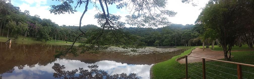 Jardim Botânico da Universidade Federal de Juiz de Fora (UFJF) — Foto: Roberta Oliveira/G1