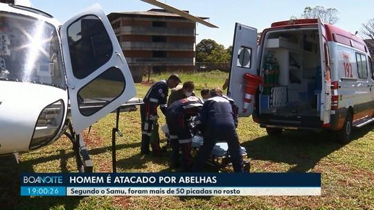 Homem picado por abelhas em Marialva é levado de helicóptero para hospital de Maringá