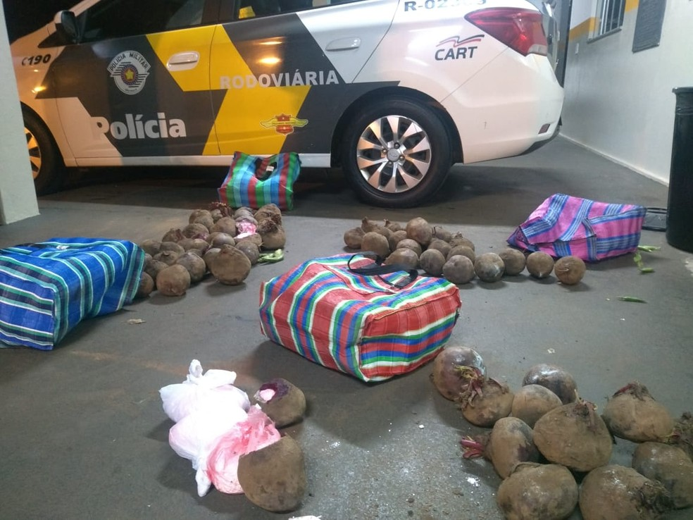 Mais de 26 quilos de cocaína são encontrados escondidos em beterrabas que estavam em ônibus, em Assis — Foto: Polícia Rodoviária/Divulgação