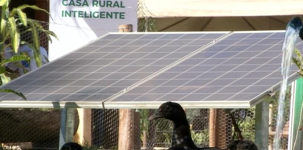 Placa solar ajuda produtores a economizar — Foto: Reprodução/TV Anhmaguera