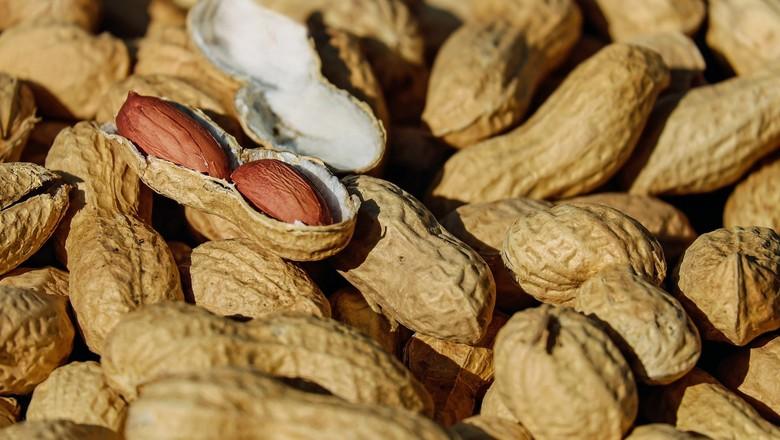 Amendoim in natura (Foto: Abicab/Divulgação)
