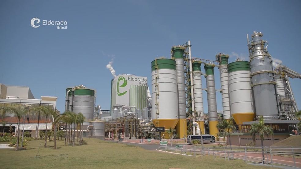 Compra da Eldorado Celulose pela Paper Excellence por R$ 15 bilhões foi o maior negócio do ano, segundo a Anbima (Foto: Reprodução YouTube/Divulgação)