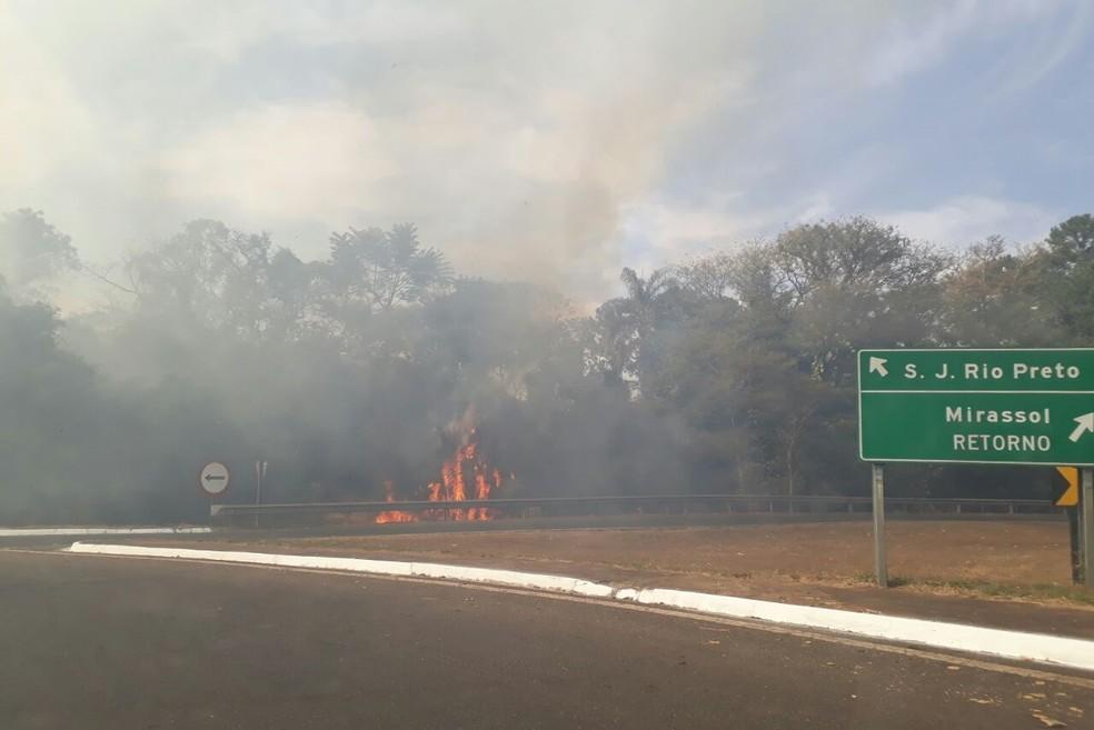Incêndio atingiu área às margens da rodovia (Foto: Agda Prado / Arquivo Pessoal)