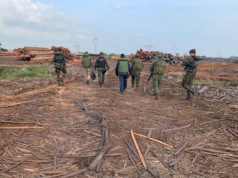Operação Verde Brasil apreende mais de 300 toras de madeira ilegal às margens do rio Moju,  no PA. — Foto: Reprodução / Comando Conjunto Norte