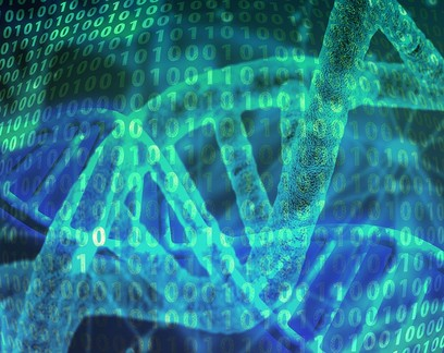 DNA de hominídeo desconhecido ainda está presente em algumas pessoas