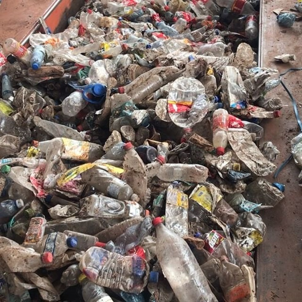 Resíduos de garrafa pet são encaminhados para a indústria de transformação — Foto: Canaã Recicláveis/Divulgação