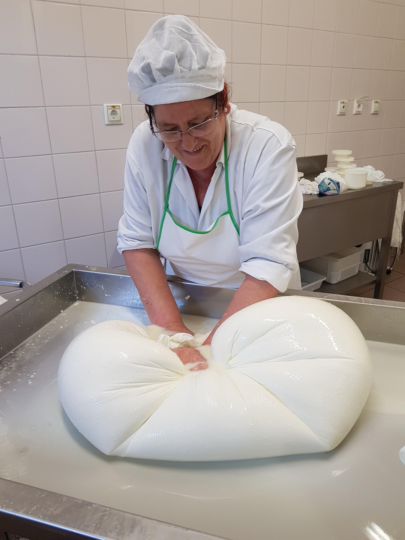 Um dos requisitos para a fabricação do queijo é que a técnica de  coagulação seja feita de forma natural