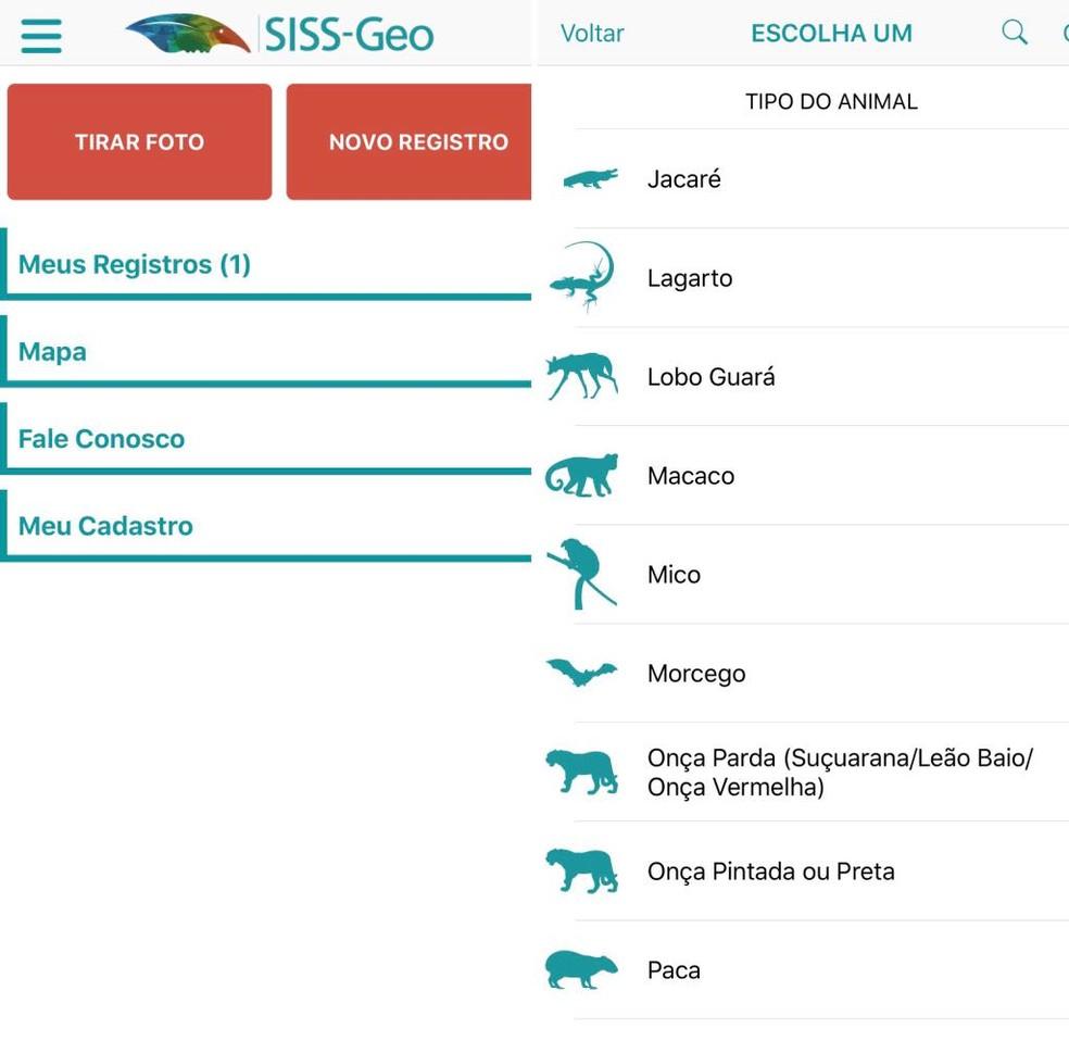 Aplicativo desenvolvido pela Fiocruz ajuda a monitorar a saúde de animais silvestres (Foto: Reprodução/Aplicativo SISS-Geo)