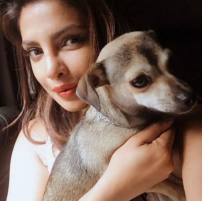 Priyanka Chopra (Foto: Instagram)