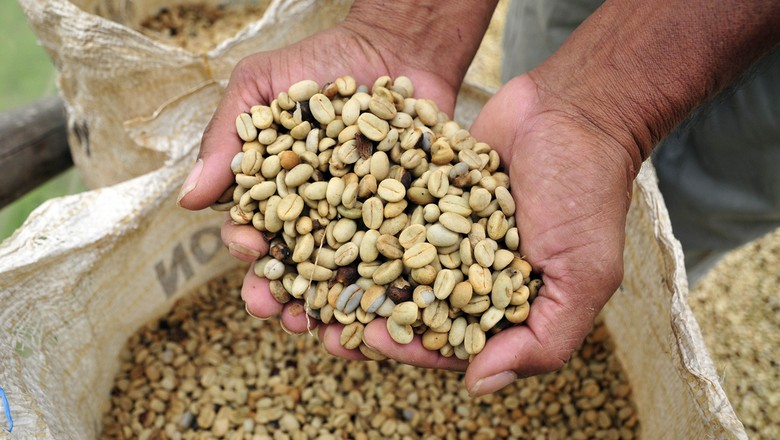 café-verde-commodity-agricola-grao (Foto: CIAT/CCommons)