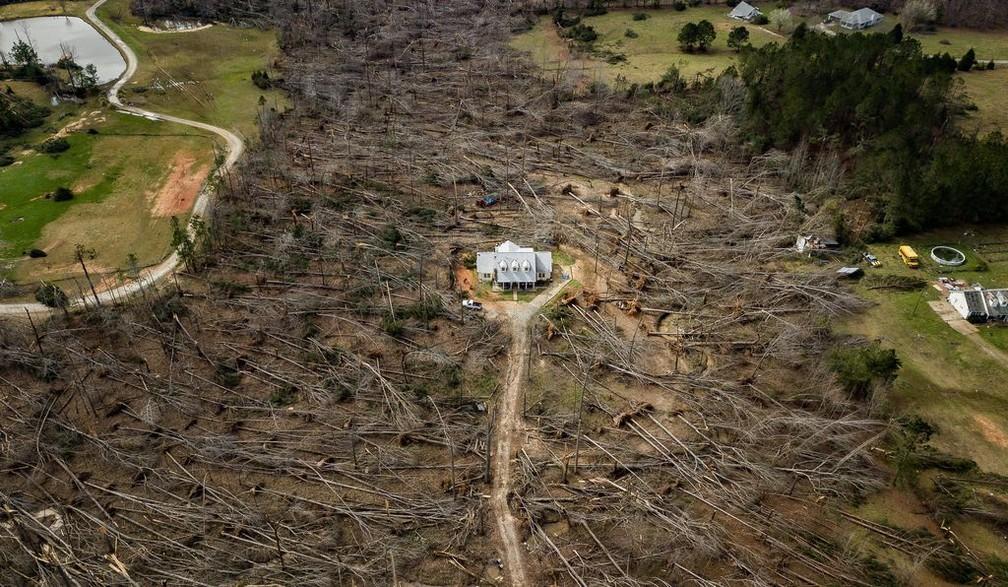 Escolha do público: Feita com drone, imagem aérea de casa que sobreviveu intacta a dois tornados em meio a diversas árvores caídas no estado da Geórgia, nos EUA, foi a vencedora na categoria — Foto: Matt Gillespie via Smithsnian Mag