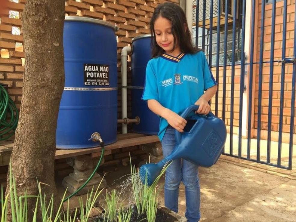 Horta tem captação de água da chuva como forma de economia sustentável (Foto: Graziela Rezende/G1 MS)