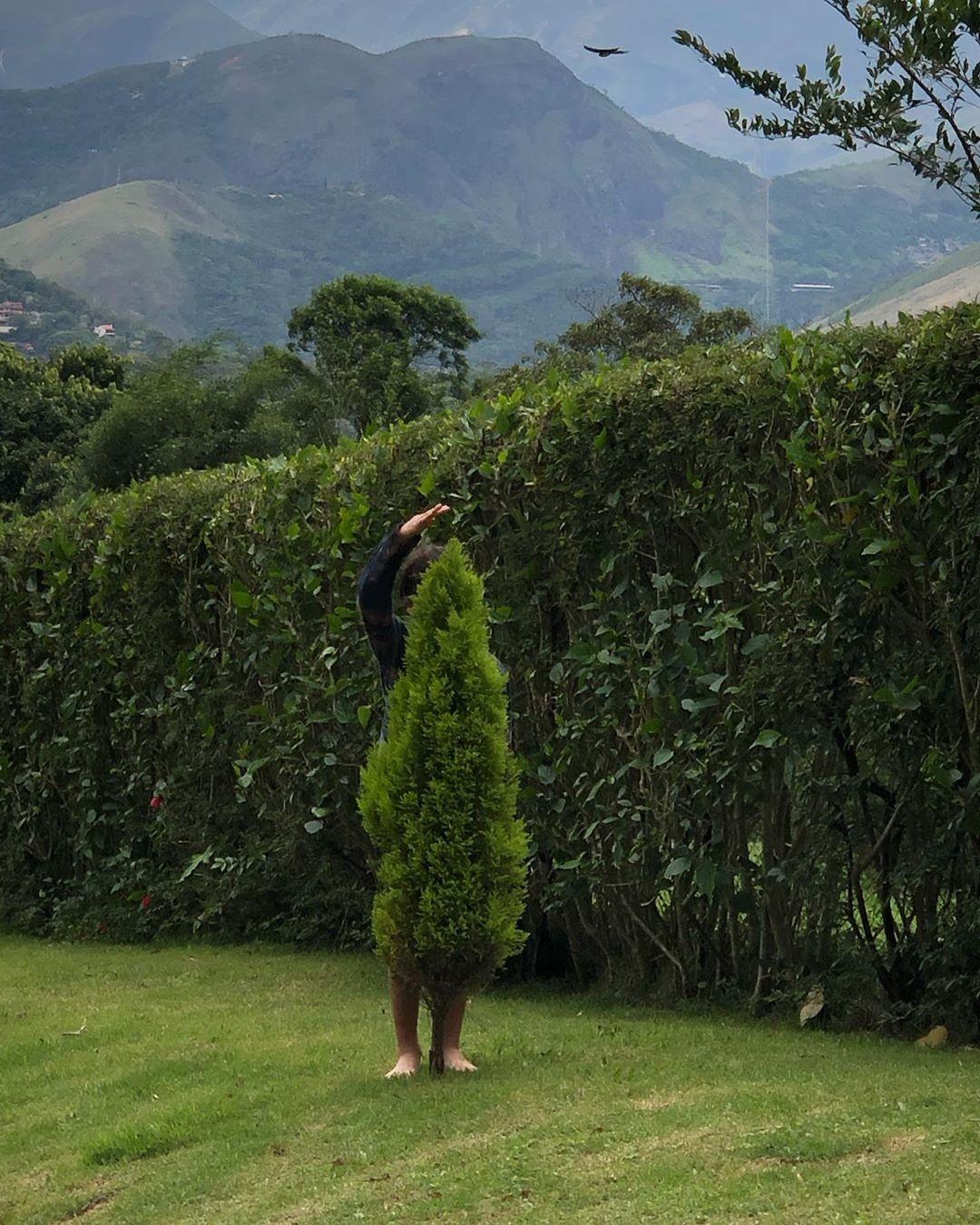 Kauai: do tamanho da árvore (Foto: Reprodução / Instagram)