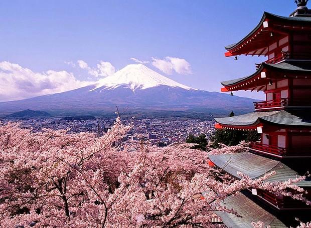 Flores de cerejeira, Japão – Conhecida popularmente como Sakura, esta flor é símbolo do país. Seu significado é tão intenso, que o povo a respeita como a própria bandeira ou o hino nacional. Impossível visitar o Japão sem conhecer esse ícone tão forte (Foto: Reprodução/BlogBlux)