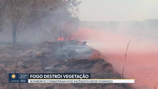 Bombeiros combatem dois incêndios em áreas florestais do DF neste domingo (20)