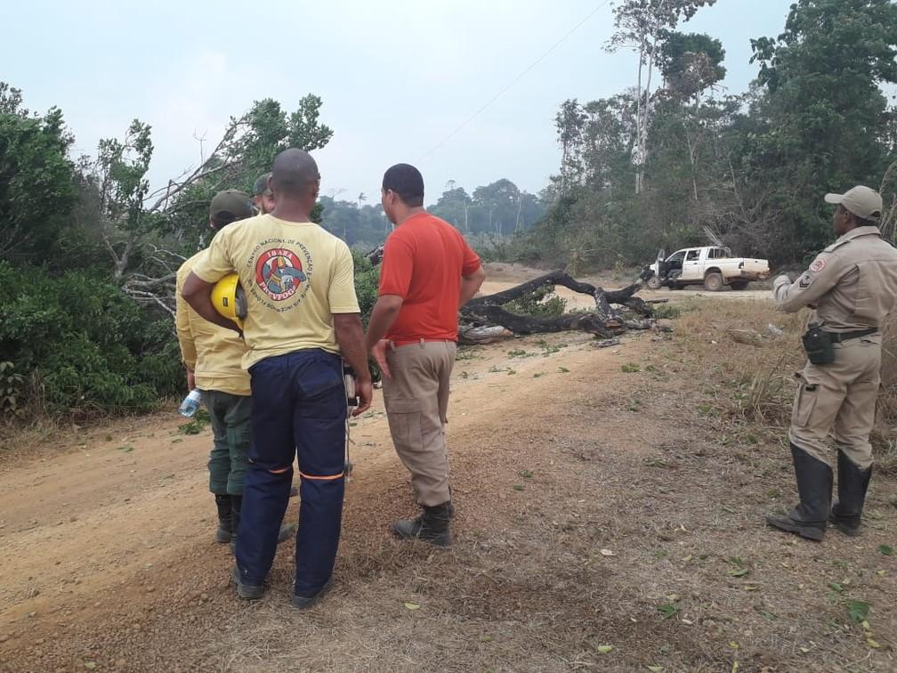 Ações de combate acontecem na reserva Jacundá, em RO — Foto: 17ª Brigada/Divulgação