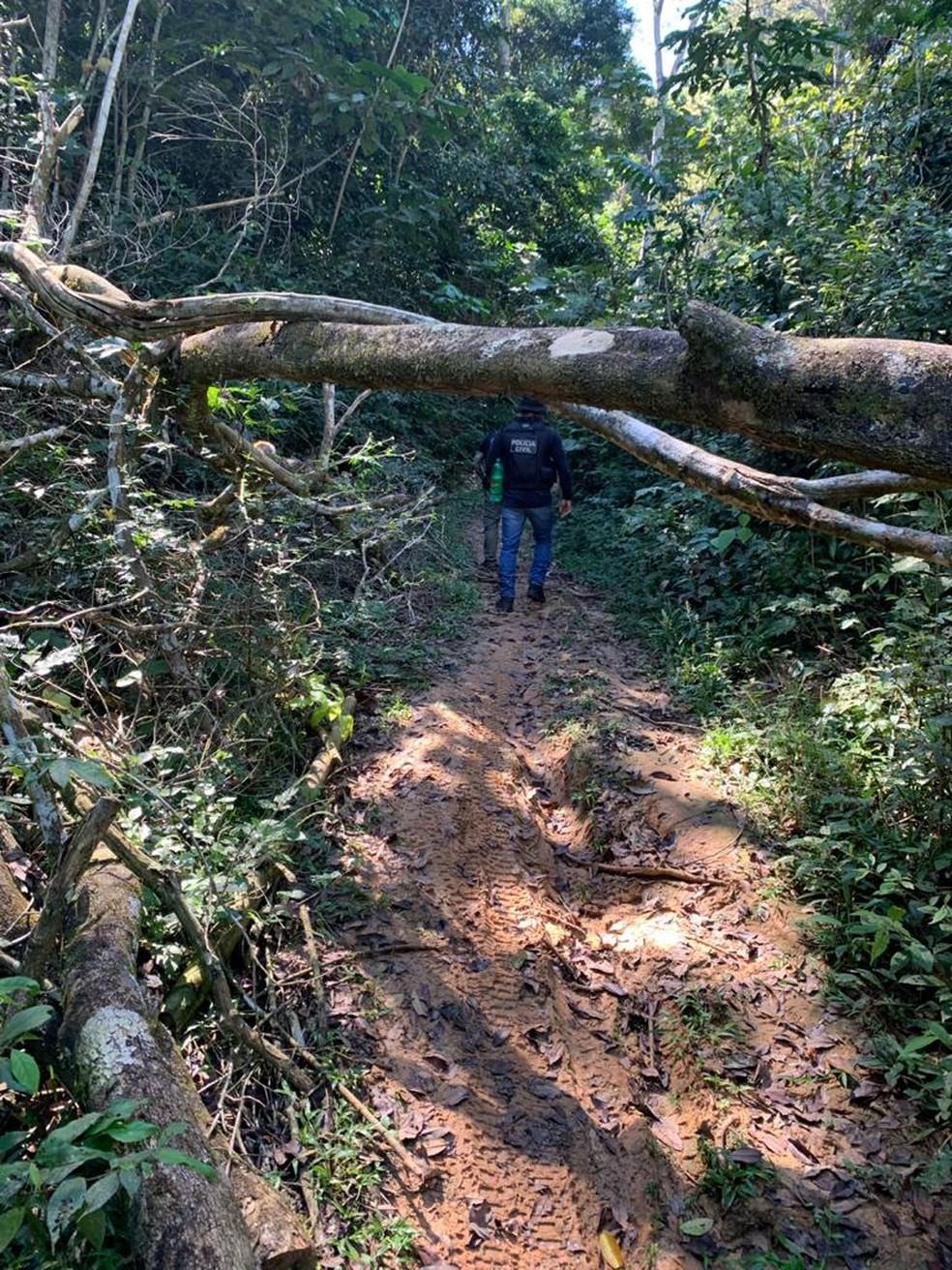 Floresta Estadual do Antimary passa por fiscalizações e ações constantemente contra invasões de terras e desmatamento — Foto: Arquivo/Polícia Civil