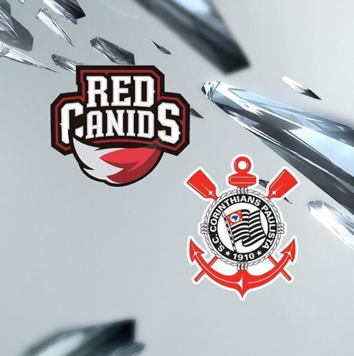RED Canids e Corinthians  entenda o fim da parceria  ec0f09db9b040
