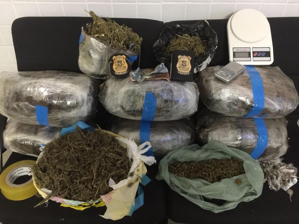 Quadrilha suspeita de tráfico de drogas em Afogados foi presa na Zona Oeste do Recife — Foto: Polícia Civil/Divulgação