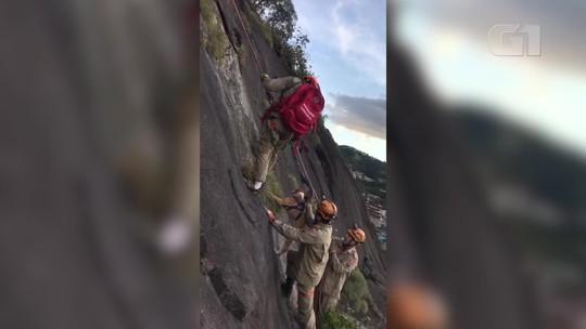 Bombeiros usam técnicas de escalada e rapel para resgatar cadela que ficou presa em pedreira no RJ; vídeo