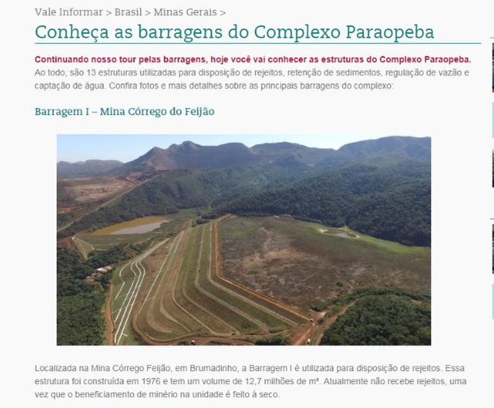 Reportagem no portal da Vale mostra informações sobre barragem que se rompeu em Brumadinho — Foto: Reprodução