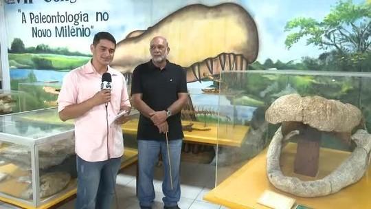 Fóssil de réptil de 8 milhões de anos é levado para laboratório de paleontologia da Ufac