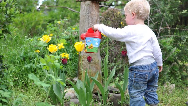 criança-crianca-bebe-pequeno-campo-brincar-brinquedo (Foto: Pxhere/Creative Commons)