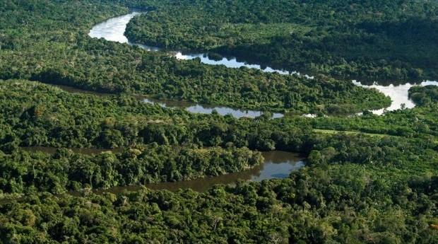 amazonia (Foto: Tamara Sare/Fotos Públicas)
