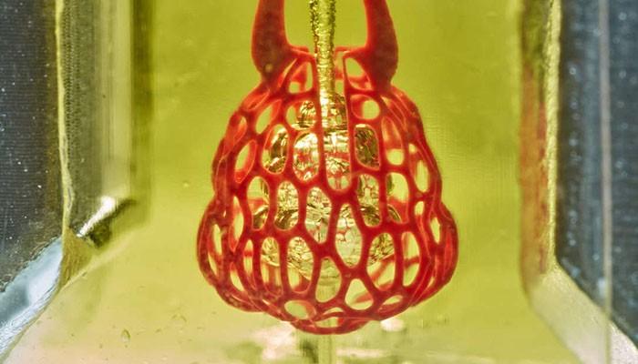 Um modelo do que seria usado como pulmão (Foto: Reprodução/Rice University)
