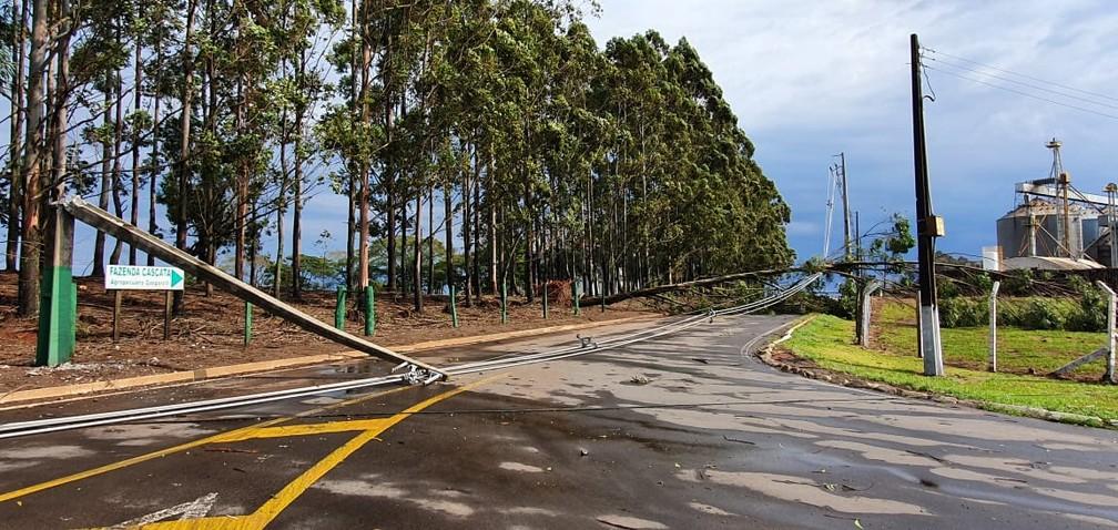 Em Bela Vista do Paraíso, postes caíram sobre a rodovia após temporal nesta quarta-feira (19) — Foto: Alberto D'Angele/RPC