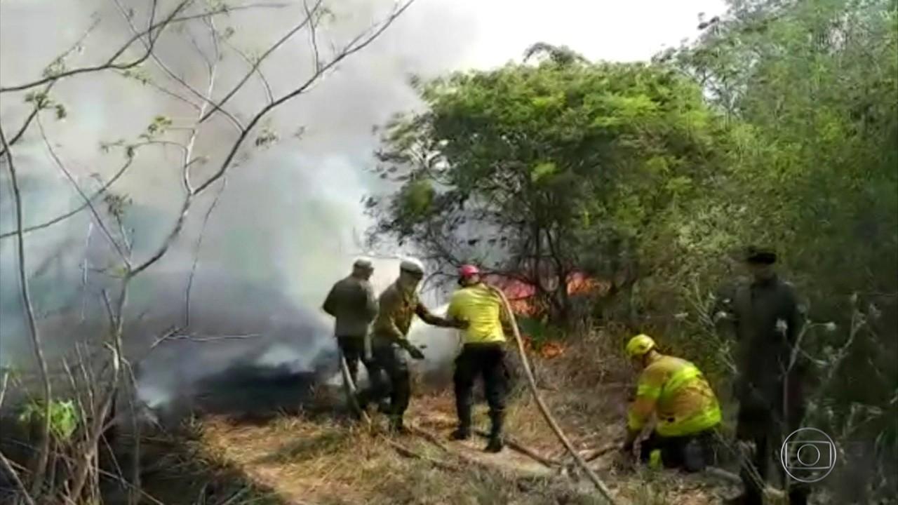 Pantaneiros se unem a brigadistas no combate às chamas no Pantanal em MS