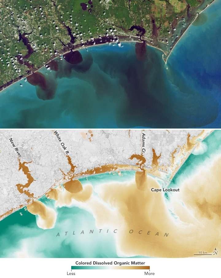 Águas afetadas pelas matérias indo para o Atlântico (Foto: NASA/USGS)