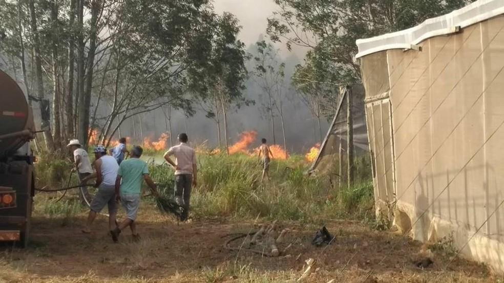 Produtores rurais da região precisaram ajudar no combate às chamas (Foto: Arquivo pessoal)