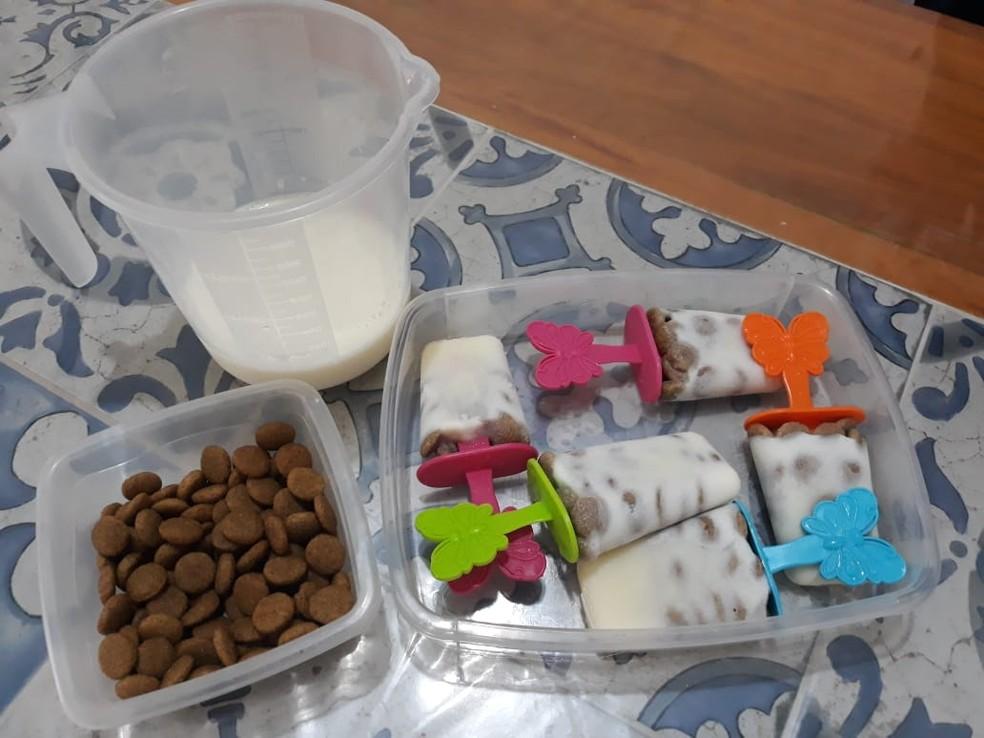 Para fazer o picolé, Giovana usa leite e ração — Foto: Rodolfo Pardini/TV TEM